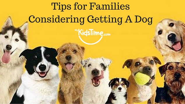 Tips for FamiliesConsidering Getting a Dog