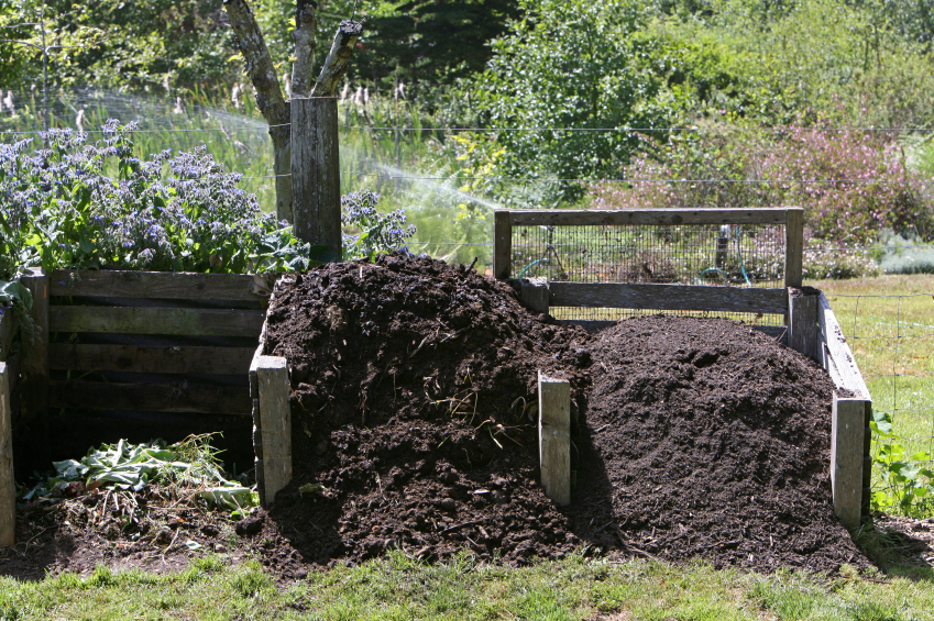 Giy How To Make Compost