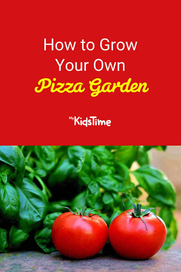 How to Grow Your Own Pizza Garden - Mykidstime