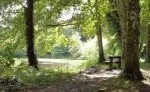 rossmore-forest-park-featured