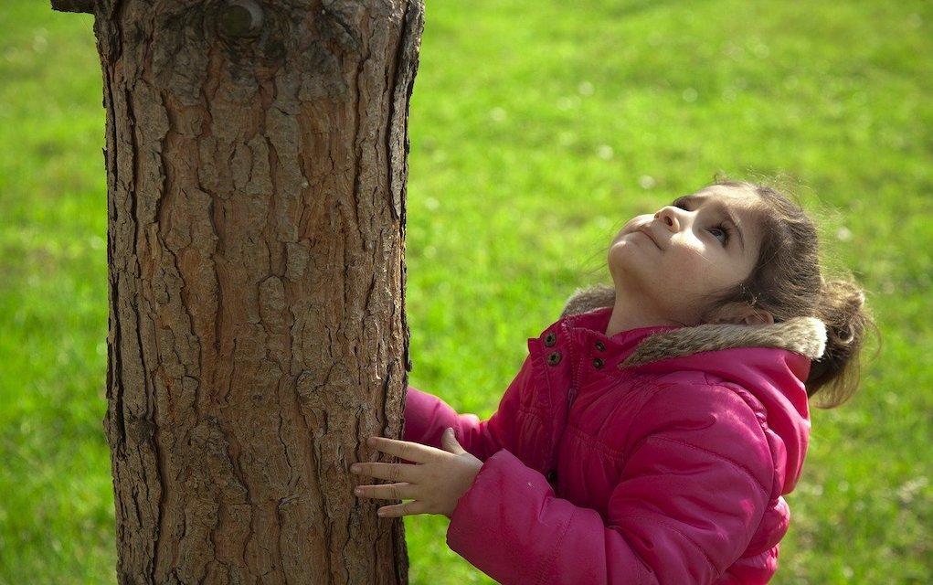 child measure a tree outdoor activities for kids