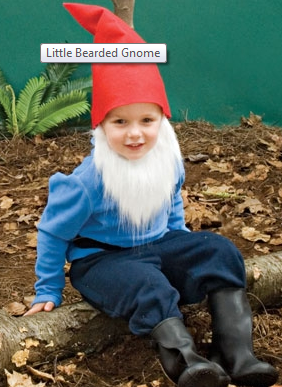 little_bearded_gnome