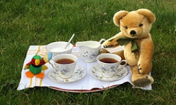 free things to do with kdis teddy bear picnic