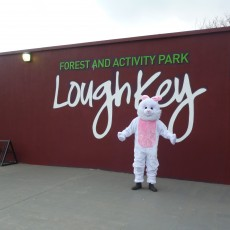 Lough Key Forest Adventure Park