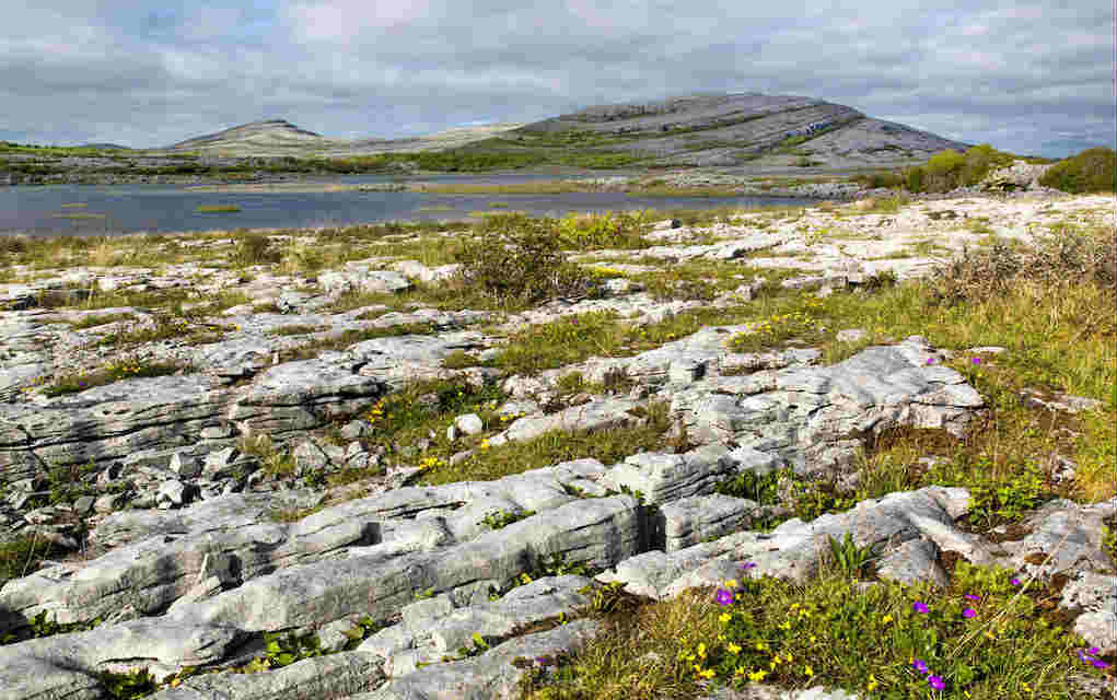 A day trip to the Burren - Mykidstime