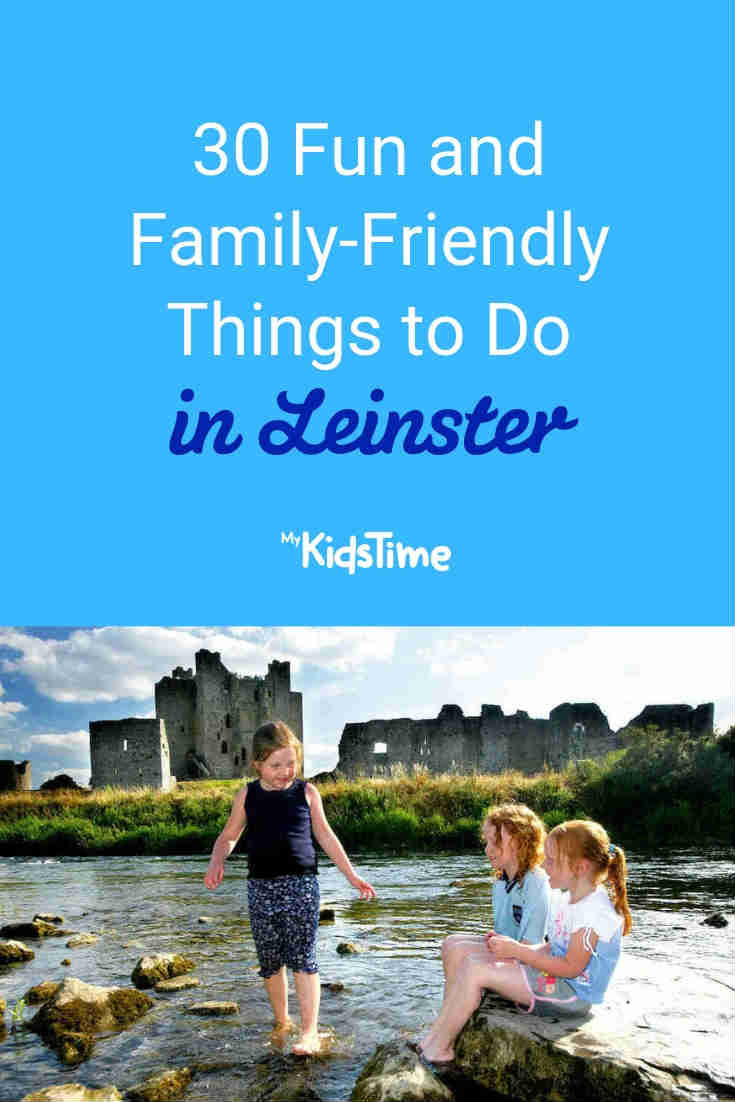 Fun and Family-Friendly Things to Do in Leinster - Mykidstime