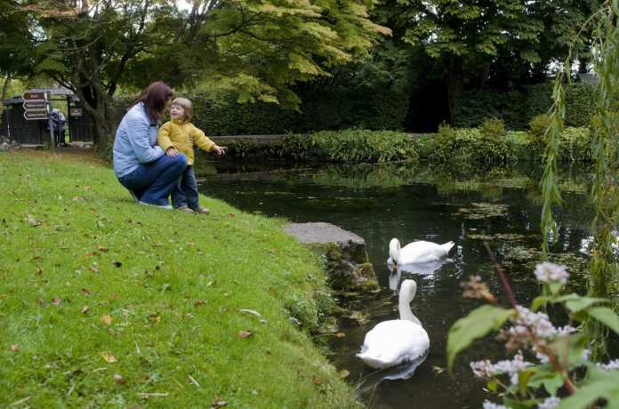 Irish National Stud and Gardens outdoor places in Kildare