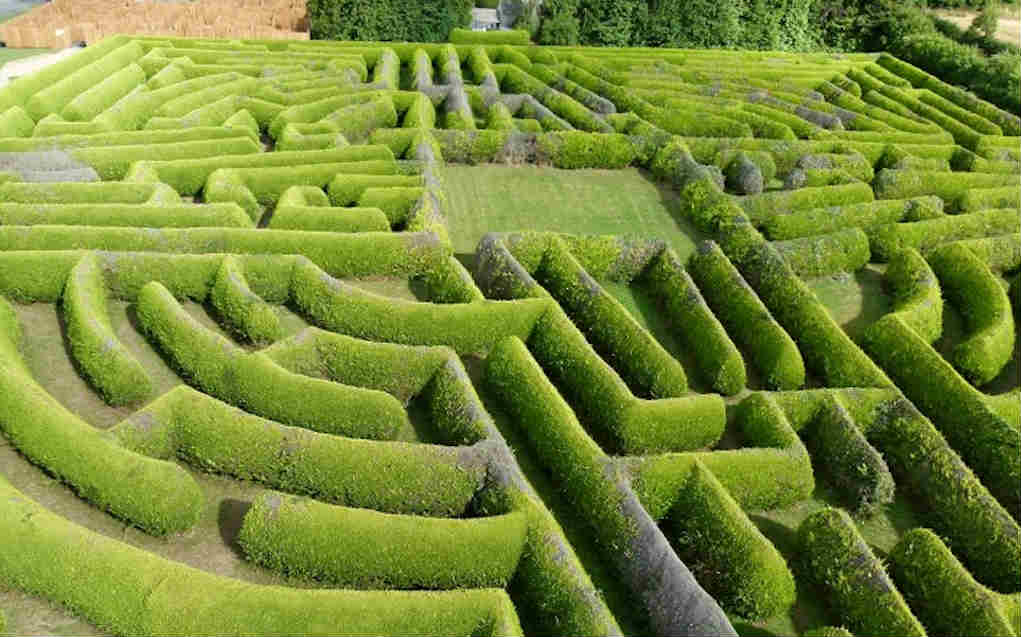 Kildare Maze for things to do in Leinster - Mykidstime
