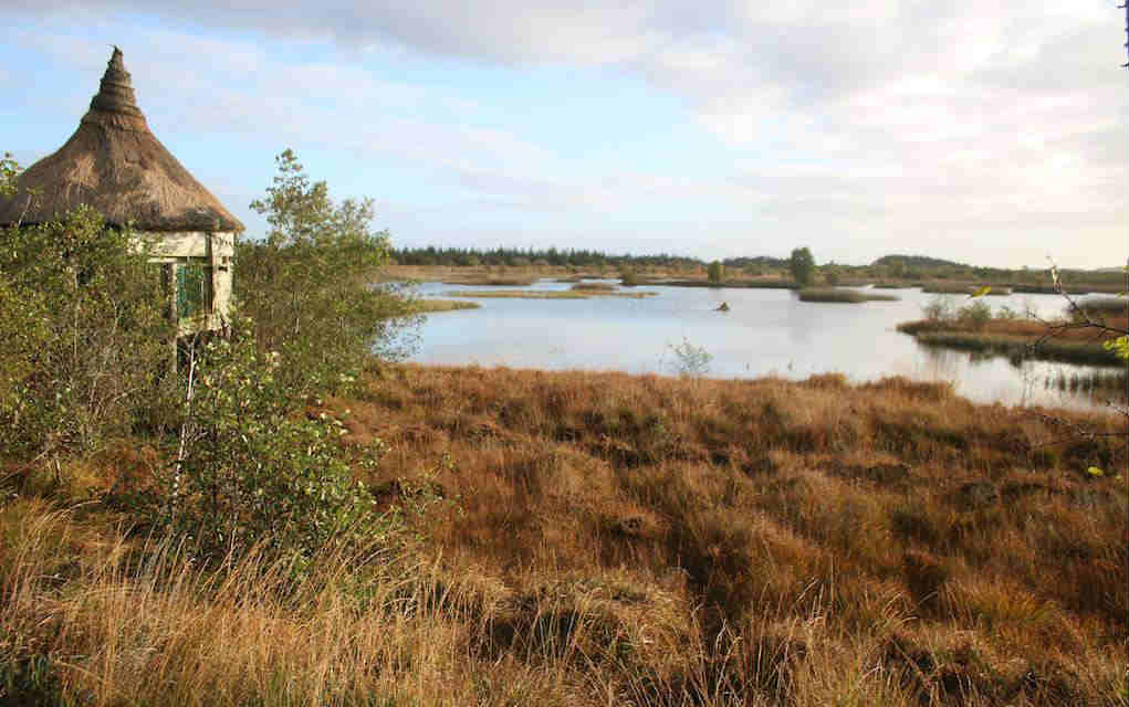 Lough Boora Park for things to do in Leinster - Mykidstime