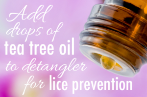 EssentialOils-LicePrevention