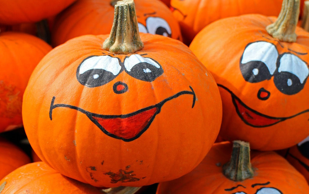 Pumpkin halloween decoration ideas Halloween Camps in Ireland