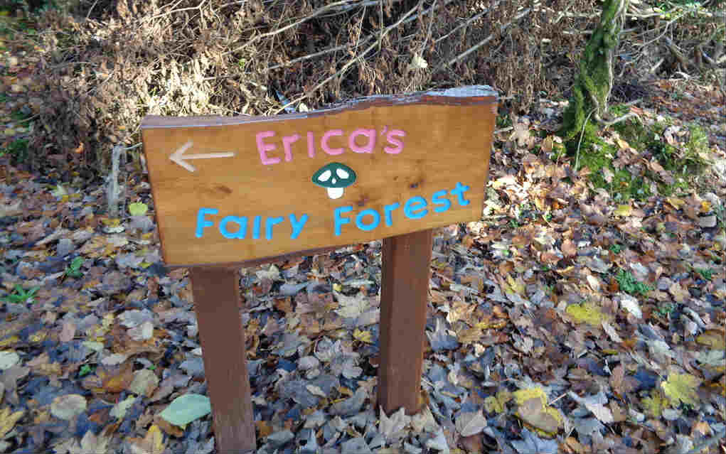 Erica's Fairy Forest for things to do in Cavan - Mykidstime