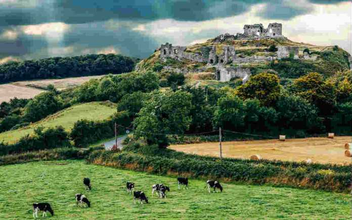 Rock of Dunamase for walks in Laois