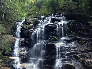 Fre things to do in Sydney with kids wentworth falls sydney australia waterfall