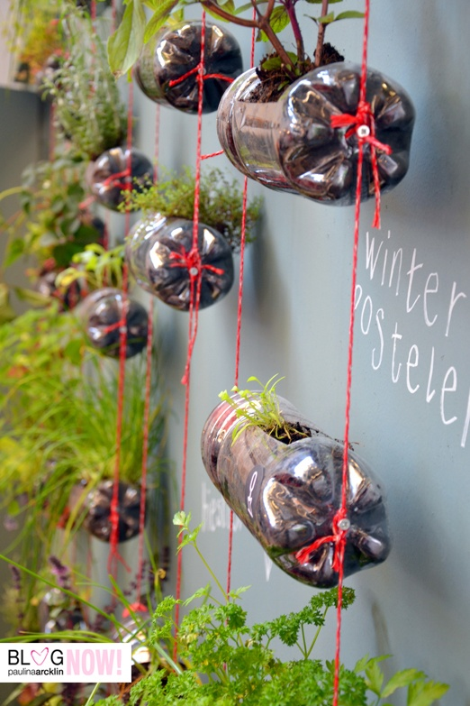 Bottle Planter