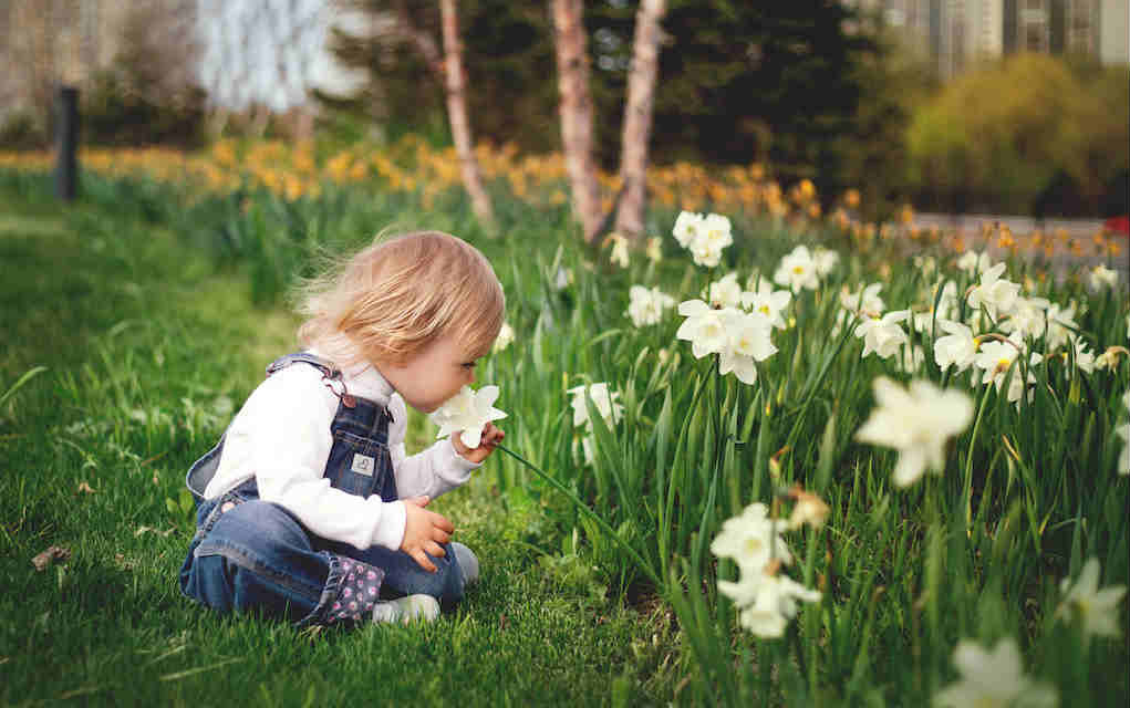 Child with daffodil for Easter activities - Mykidstime