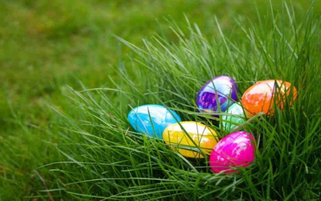 Easter activities for kids to do outdoors - Mykidstime