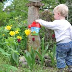 child-watering-flowers559407_640