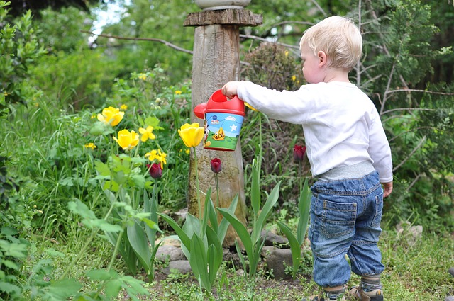 Child watering flowers for garden chores