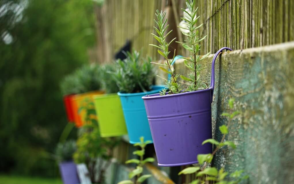Garden activities for preschoolers hanging pots in the garden
