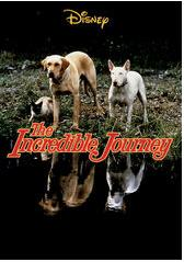 Best Family Movies incredible-journey