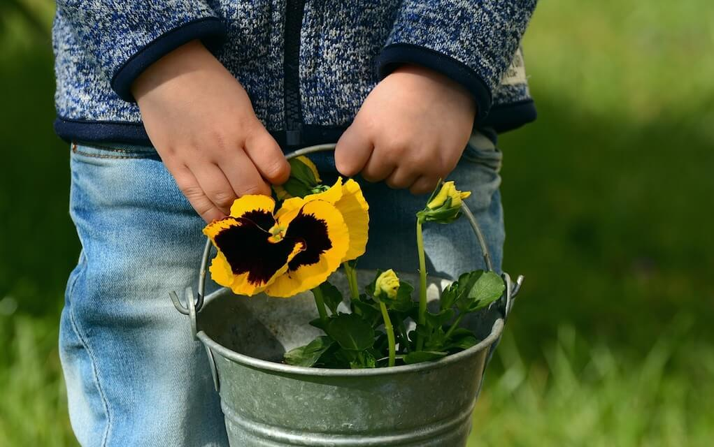 garden activities for preschoolers tips to get your kids into gardening
