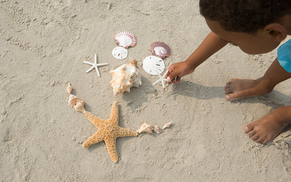 Child collecting shells on the sand for things to do at the beach