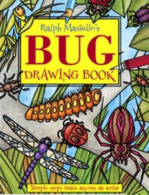 bug drawing book