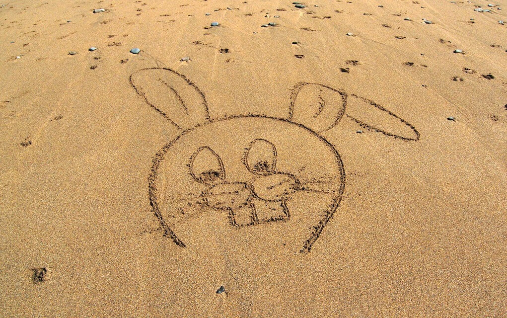 Rabbit picture in the sand on the beach