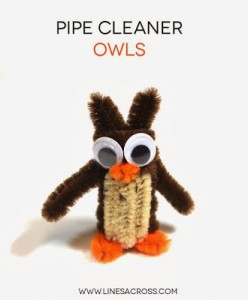 Pipe Cleaner owls