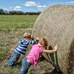 kids helping on farm