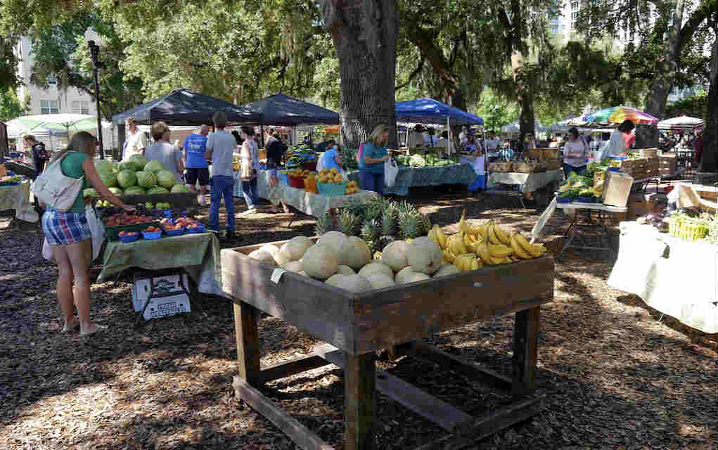 Mykidstime Orlando Restaurants for kids Lake Eola Farmers Market