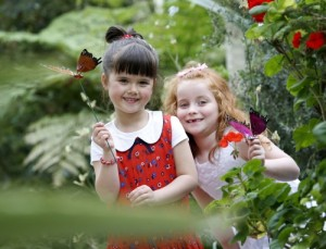 Budding Bloomers Chloe Walsh, age 6 and Kiki Deegan, age 6, (right) Picture Robbie Reynolds