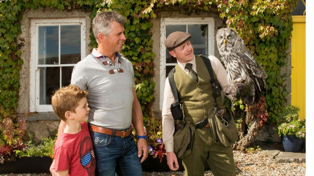 Birds of Prey Centre at Westport House. Fantastic experience for all the family.