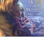 a kitten called moonlight
