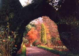 altamont garden Spring walks for families in Ireland