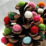 wooly acorn pine cone