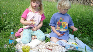 Practical Picnic Ideas for Perfect Day out with Kids