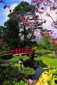 japanese garden irish national stud