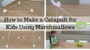 How to Make a Catapult for Kids Using Marshmallows