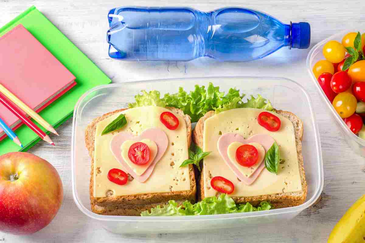 101c164cdedc 100 Healthy Lunch Box Ideas Your Kids will Love