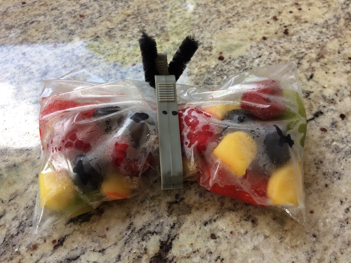 lunch box ideas fruit butterflies