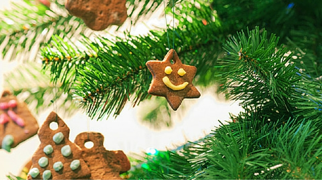 8 Tempting Homemade Xmas decorations you can eat