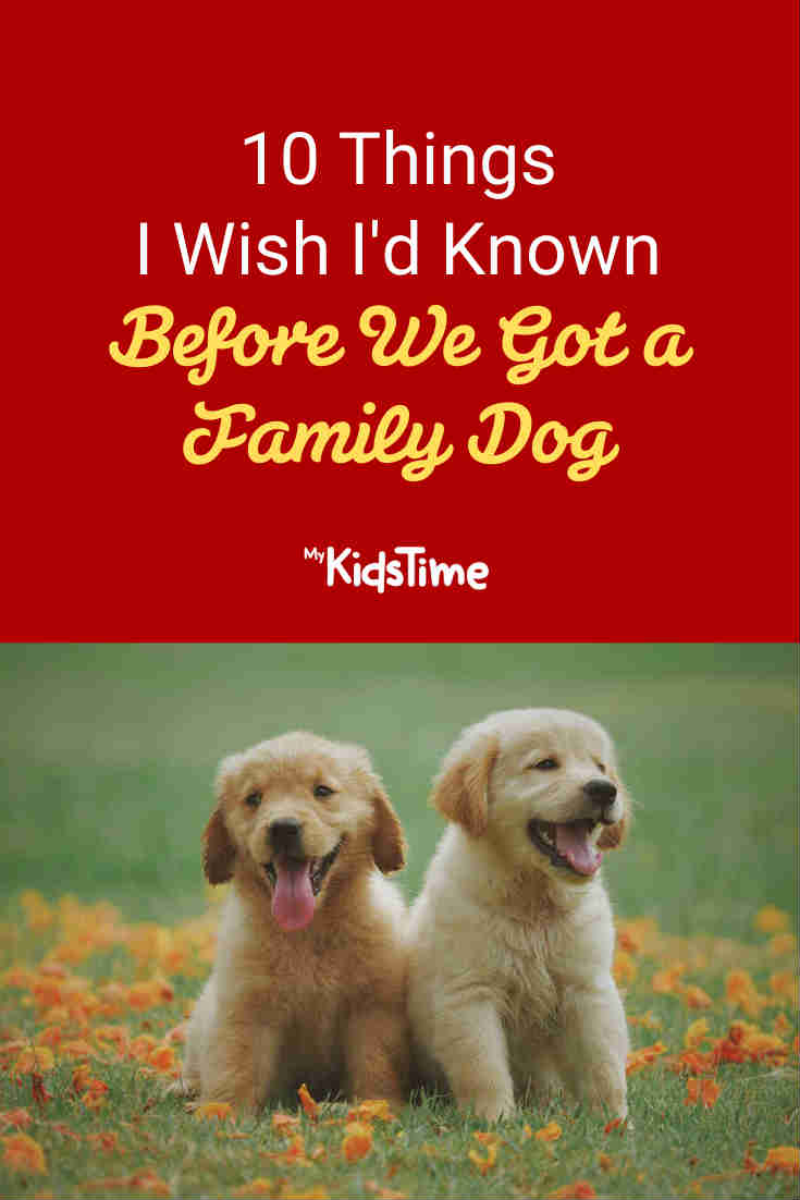 10 Things I Wish I'd Known Before We Got a Family Dog - Mykidstime