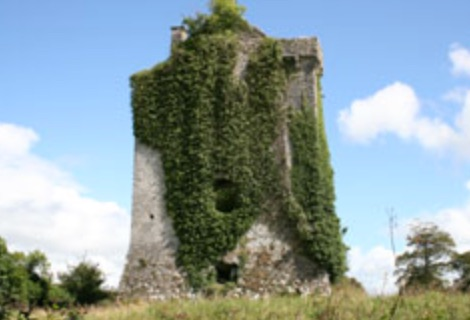 Spring walks for families in Ireland castle hackett castles in Ireland