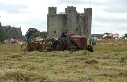 trim-haymaking-festival festivals in Ireland for summer 2020