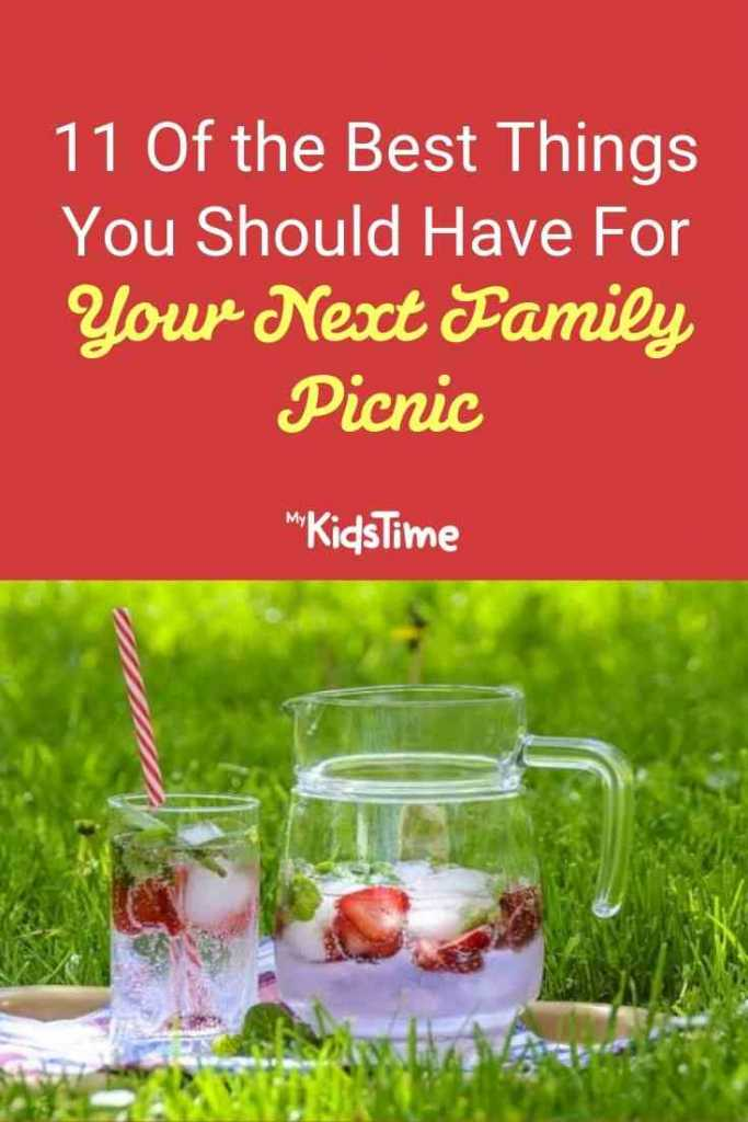 11 of the best things you should have for your next family picnic