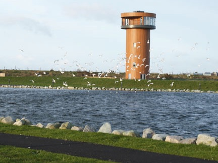 Tralee Bay Wetlands Spring walks for families in Ireland