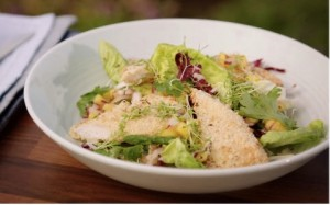 healthy salad chicken with mango salsa