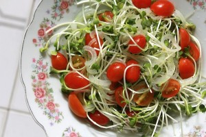 tomato onion cress salad